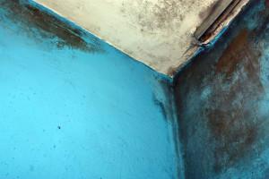 Jak odstranit plísně v bytě Praha 1