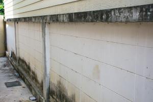 odstranění plísně ze zateplené fasády Praha 9