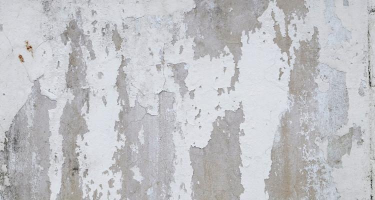 jak na plíseň na stěnách Praha 7