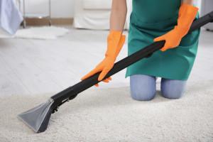 profesionální vyčištění kobrcové plochy