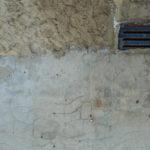 plíseň na stěně